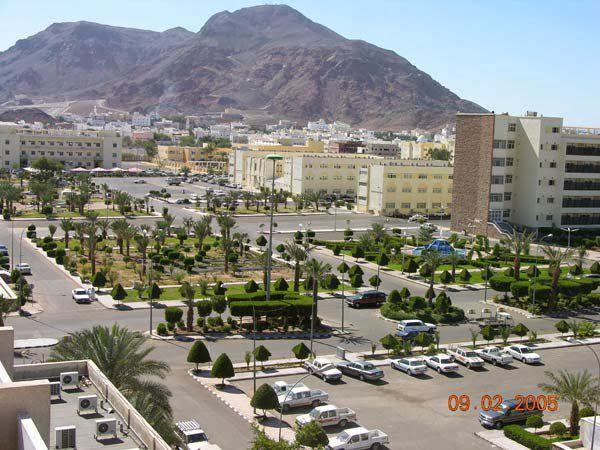 Universitas Madinah