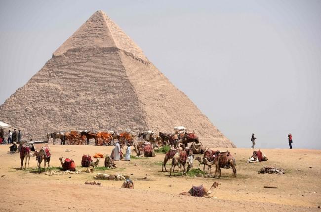 Bisa pilih naik kuda atau unta untuk keliling Piramida Khafre dan Sphinx